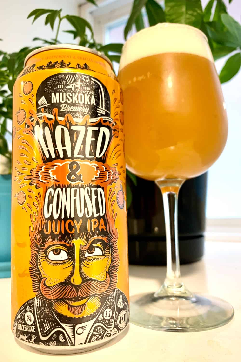 Where does the hazy IPA come from