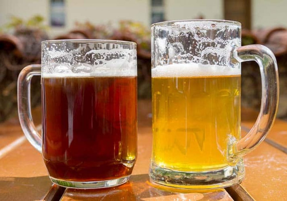 Lager vs. IPA: The Comprehensive Comparison and Making Guidance